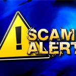 Common Flippa Scams